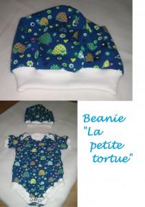 La petite tortue Beanie